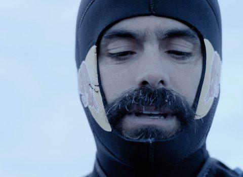The Antarctic Dive – 4K